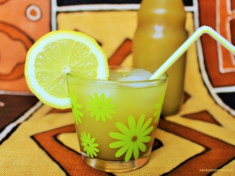 diy-sirop-de-giengembre-samba-sisters-touch